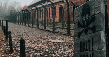 12 kroków do pokonania traumy od ocalałej z Holokaustu
