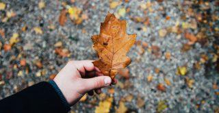 Czeka nas ciężka jesień - Przygotuj się!